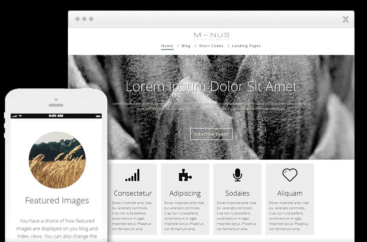 thrive WordPress theme